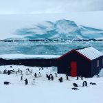 Antarctica Holidays Packages
